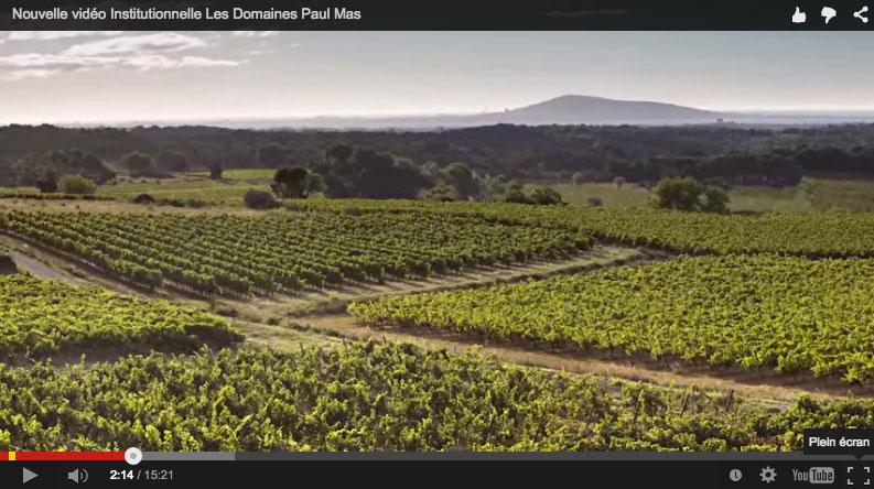 Les Domaines Paul Mas, une vision grand angle du Languedoc