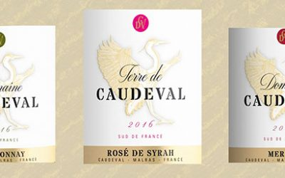 New label for Caude Val 2916 Wines