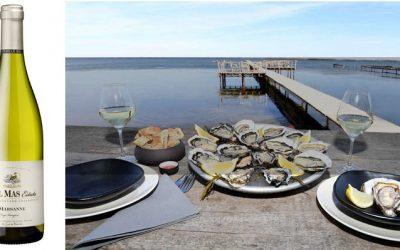Accords mets et vins, huîtres et Paul Mas Estate Marsanne