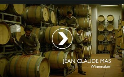 Wine Enthousiast Video