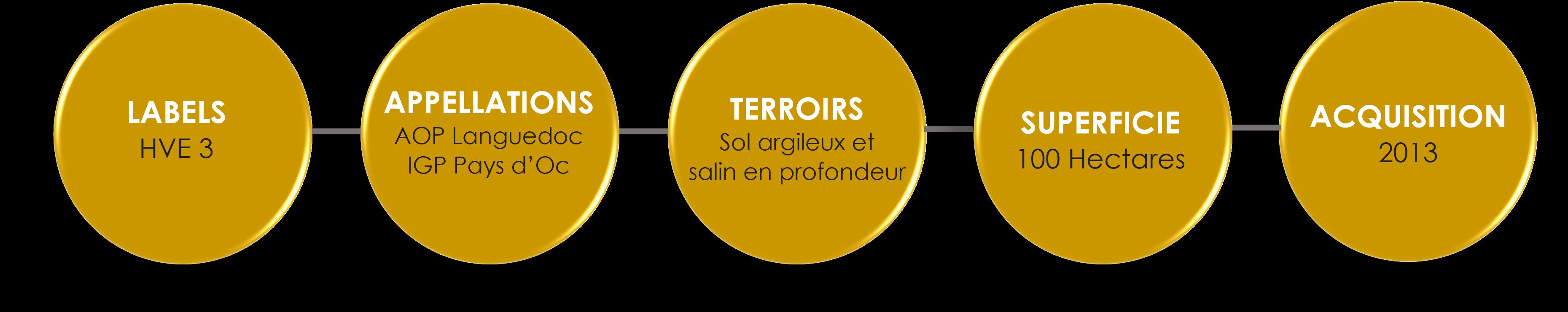 Chiffres Clés Ferrandière FR